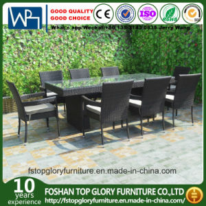 Viro PE juegos de comedor al aire libre muebles Gardon