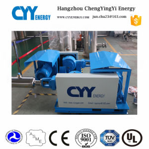 2018 High Presses Liquid Natural Gas Cryogenic Liquid Filling Pump