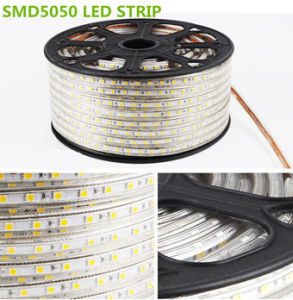 indicatore luminoso di striscia bianco caldo di alta luminosità di 220V 5050SMD 10mm