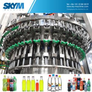 riga di riempimento di plastica dell'acqua di bottiglia della garanzia 12months