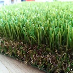Het dikke Natuurlijke Kijken het Tapijt van het Gras voor de Bevloering van het Dak