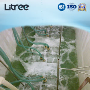 PVDF reforzado UF MBR de membrana de sistema para el tratamiento de agua