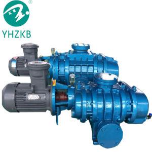 Vakuumpumpe-/Air-Pumpe der Wurzel-70L/S