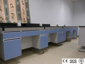 La madera y muebles de laboratorio de acero (Arabia árabe proyecto)