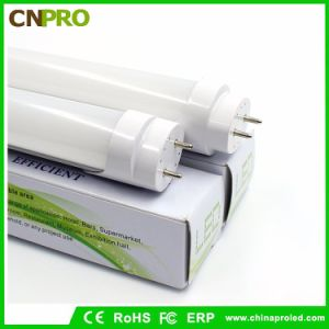 Hot Sale prix bon marché LED TUBE T8 de la lumière avec ce RoHS