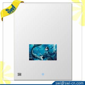 新しい構造の洗浄部屋消えていくミラー防水TV