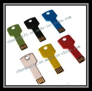 主USBのフラッシュディスク49