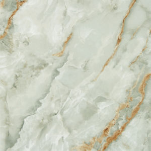 Antiek kijk de Tegels van de Vloer van het Porselein/Hoogtepunt Opgepoetste Ceramiektegel