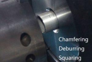 Rohrende-abschrägenmaschine mit Servomotor drei (TEF508CPV)