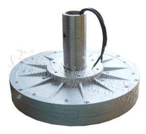 1kw de Generator van de Wind van de Schijf van Corelss