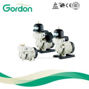 Kleine selbstansaugende elektrische Selbstpumpe des Wasser-Ga101 mit Becken