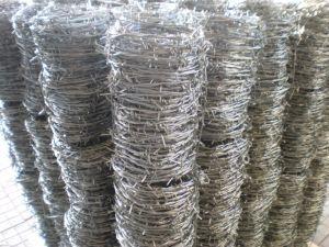 Collegare pungente rivestito del PVC & galvanizzata del ferro