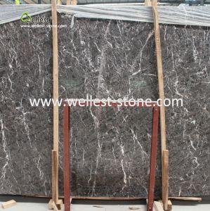 De binnenlandse Tegel van de Vloer en van de Muur met Zwarte Marmeren Plakken