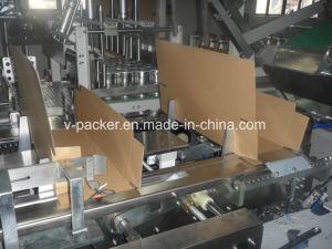 Ajuste automático de la Máquina para embalaje de té (Vpak WJ-LLGB-15)