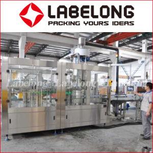 自動5000bphによって脱イオンされる水または蒸留水ペットまたはガラスビンの詰物かびん詰めにするか、またはパッキング機械