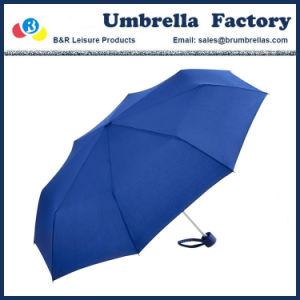 Verde compatto 21 dell'ombrello delle signore