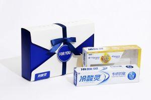 처분할 수 있는 환경 생물 분해성 테이크아웃 상자 선물 상자