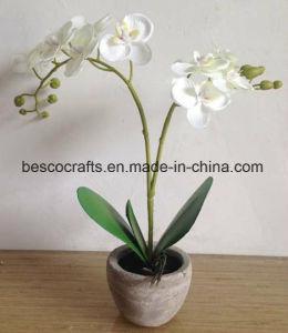 H36см декоративные ткани орхидея Орхидея с пластинчатой
