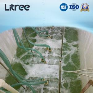 食肉処理場の廃水処置のための水中に沈められたMbrの膜水フィルター