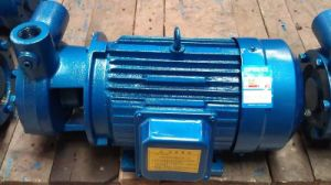 Turbulenz-Pumpe des einzelnen Stadiums-1W