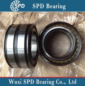 Doppeltes gedichtetes zylinderförmiges Rollenlager Nnf5011PP/SL045011PP