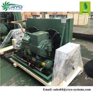 A unidade de refrigeração industrial nova unidade de condensação para a sala para bagagem