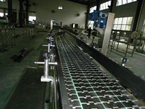 Usine de fabrication des aliments Ligne de transmission de la plaque de chaîne de convoyeur flexible