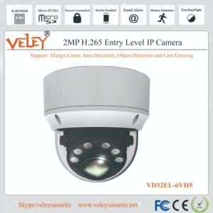 Wasserdichte CCTV-Kamera-Lieferanten CCTV-Sicherheits-Netz-Abdeckung-Infrarotkamera