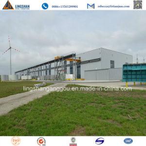Estructura de acero prefabricados de diseño moderno edificio de oficinas de almacén con certificado SGS