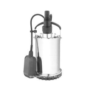 Carter d'eau sale électrique pompe submersible