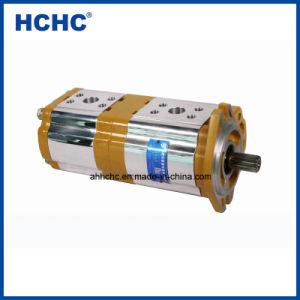 中国の工場農業のための油圧二重ギヤポンプCbtl