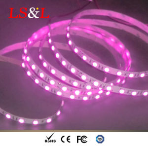 Luz de LED de raios infravermelhos o Uso da Luz de corda na sala de vapor