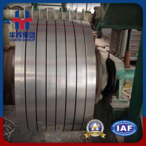 Laminato a caldo & laminato a freddo la bobina dell'acciaio inossidabile