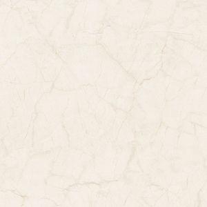 Beëindigde de Dubbele Lading van Foshan de Ceramische Tegels van het Porselein van de Vloer