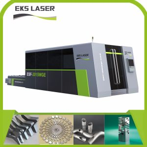 Coupe en acier inoxydable de machine de découpage au laser à filtre simple nouvelle conception