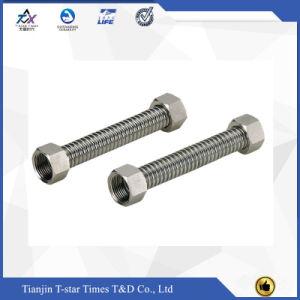 Personalizzare il tubo flessibile del metallo dell'acciaio inossidabile con i montaggi del filetto