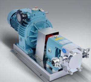 De sanitaire CentrifugaalPomp van het Roestvrij staal met Motor ABB