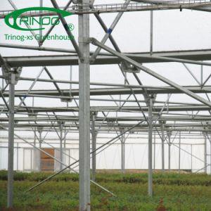 De veelvoudige Delen van de Serre met Gewaarborgde de Kwaliteit van het 9001:2008 van ISO