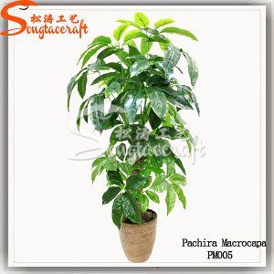 Sensação de mão Decoração Árvore Artificial Bonsai planta verde