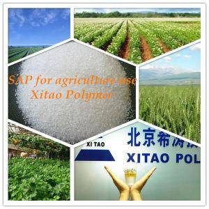 Super Absorberend Polymeer (SAP, gebaseerd kalium) voor het Gebruik van de Landbouw
