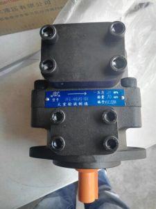 Масляный насос гидравлической системы постоянного лесного фонда-31028-1dt лопастного насоса высокого давления