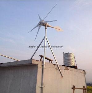 3kw fuori dal sistema della turbina di vento del sistema di energia eolica di griglia