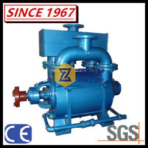 2bec 시리즈 광업, 제지, 석탄 씻기 및 발전소를 위한 액체 물 반지 진공 펌프 그리고 압축기