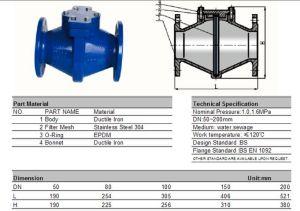 O Ferro Dúctil Design simples do filtro de Fluxo Reto