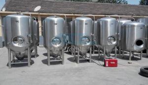Fermentors cónico para Pub Cerveja Brewing usado (ACE-FJG-070244)