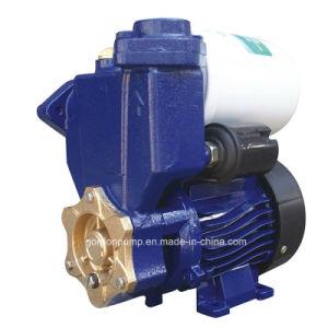 Fundición de hierro de la superficie de presión eléctrico automático de la familia de la bomba de agua potable