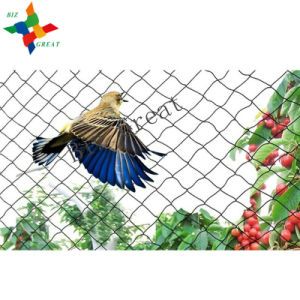 Invisible Anti Bird Netting anti inseto Netting
