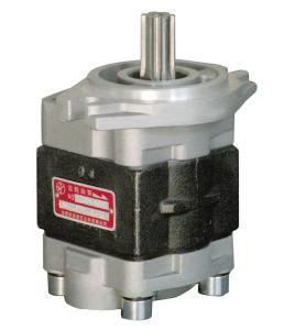 De hydraulische Pomp van het Toestel voor Vorkheftruck