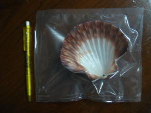 بلاستيكيّة شفّافة يعبّئ كيس حقيبة, فواكه البحر يعبّئ