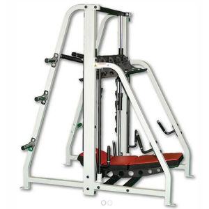 275f12998 Rogers titulados Athletic equipamento de fitness para o clube de fitness